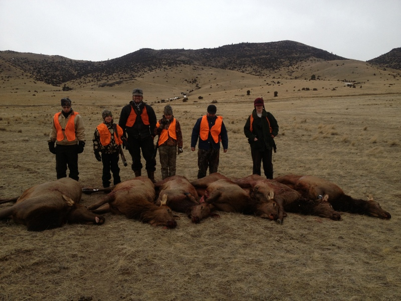Hunters with several large elk