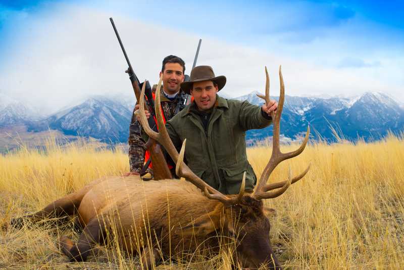 Two hunters with a large elk